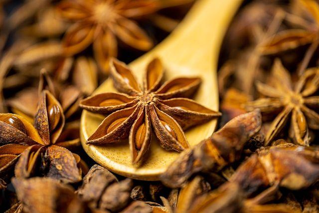 Anís estrellado mejores plantas medicinales