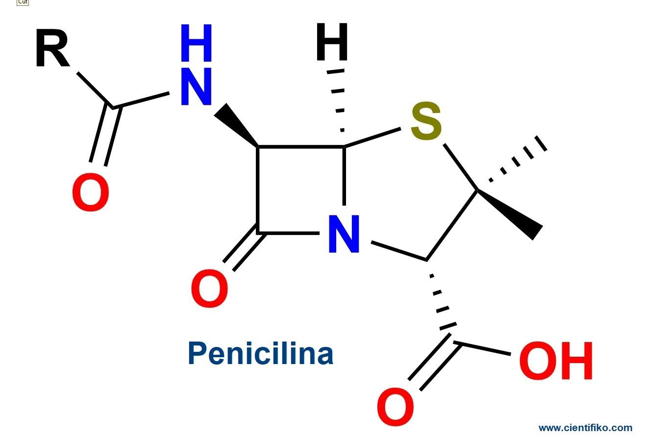 estructura de la penicillina