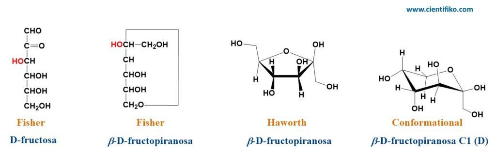 Representaciones químicas de los monosacáridos