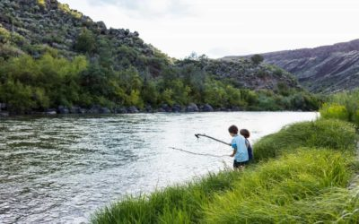 De qué están hechos los ríos del mundo