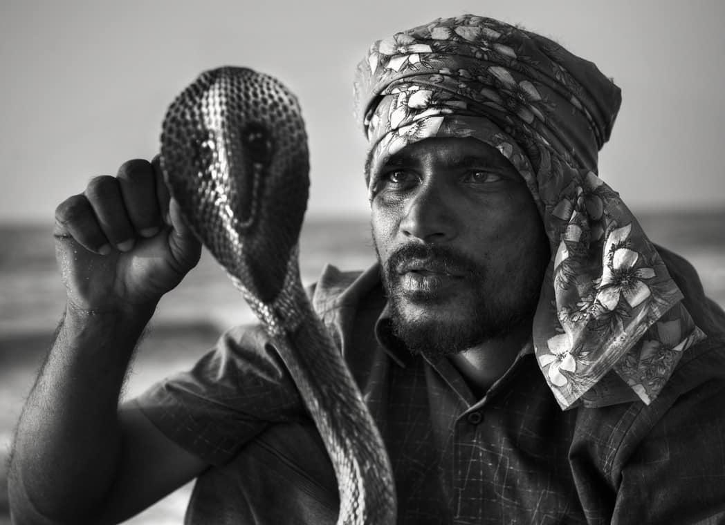 Serpientes cientifiko.com