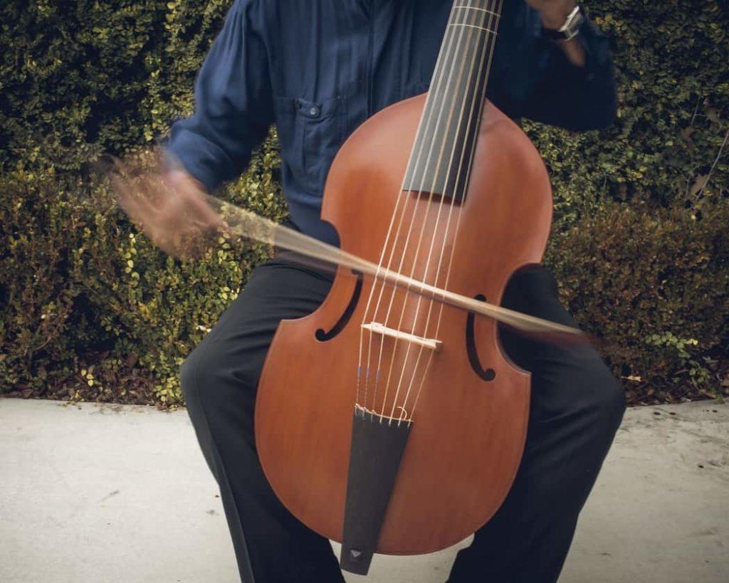 música en el renacimiento la viola