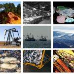 La biodiversidad: garantía de existencia