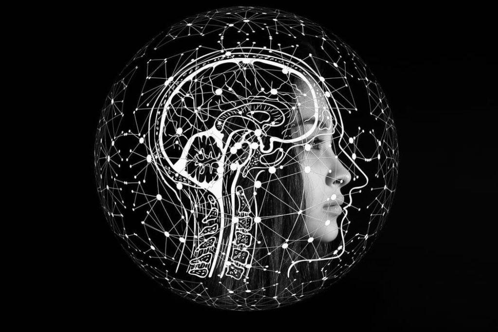 Inteligencia segun Philip Ewart Vernon 1