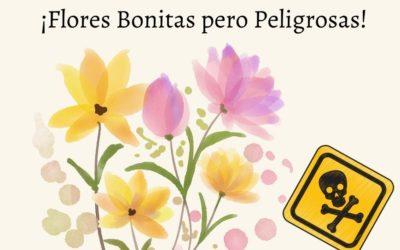 ¿Cuáles son las flores más peligrosas del mundo?