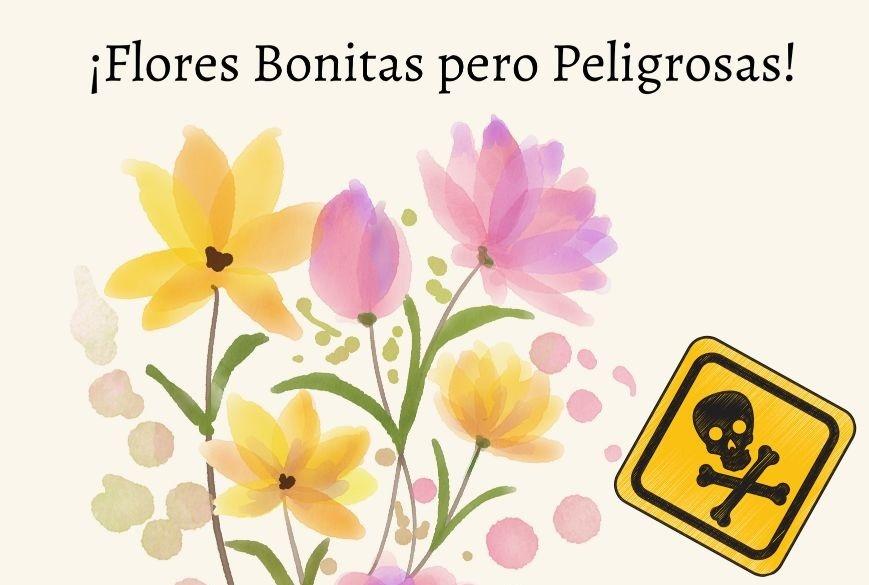 flores más peligrosas