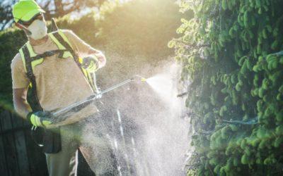 Los herbicidas más usados del mundo: un tema fundamental para todos los habitantes