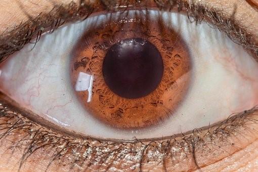 Conoce las enfermedades de los ojos más usuales y peligrosas