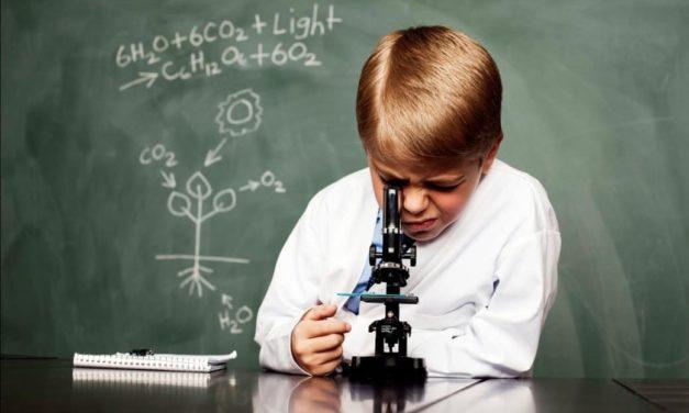 La fórmula de la fotosíntesis: transformar la luz solar a energía